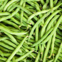 green beans vegetable price