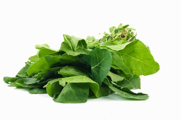 spinach price in india