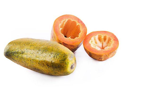 Papaya online