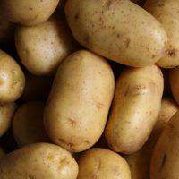 potato price in agra