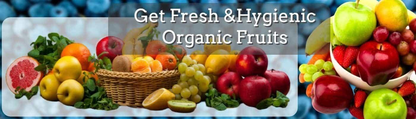 Fruits banner- Foodtokary